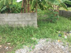 Mixed   Use Land Land for sale valley view estate oluodo ebute  Ebute Ikorodu Lagos