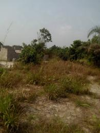Land for sale ABIJO GRA SECOND GATE Abijo Ajah Lagos - 1