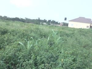Land for sale Iyan Iyesi Ota-Idiroko road/Tomori Ado Odo/Ota Ogun