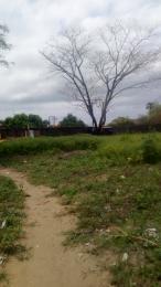 Land for sale Shapati Before Alatishe Alatise Ibeju-Lekki Lagos