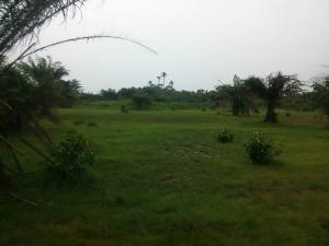 Residential Land Land for sale Ogunfayo Eputu  Awoyaya Ajah Lagos
