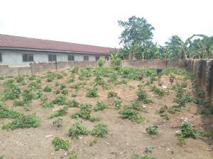 Residential Land Land for sale Omokiri aluu Choba Port Harcourt Rivers