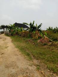Commercial Property for sale New Rd Off Ada George Ada George Port Harcourt Rivers