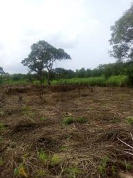 Land for sale BEHIND BUCKWOODS SCHOOL KOBAPE Kuto Abeokuta Ogun