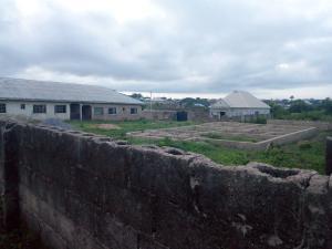 Residential Land Land for sale Pipeline Street, Area 1 off Liberty Academy, odo Ona Elewe Akala Express Ibadan Oyo