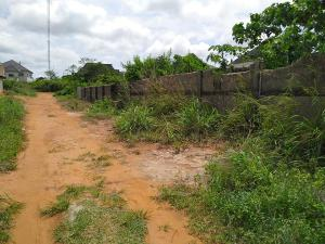 Mixed   Use Land Land for sale After Okpanam junction, close to Jostin excel school, Okpanam Oshimili North Delta