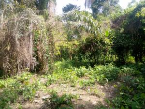 Commercial Land Land for sale Amori Village near Bare off Lagod Ibadan Expressway Ibadan Oyo