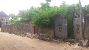 Residential Land Land for sale Ijegun Area, Satellite Town Amuwo Odofin Lagos
