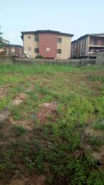 Mixed   Use Land Land for sale Odogbolu  Aguda Surulere Lagos