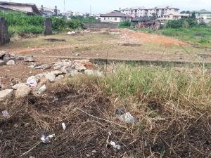 Mixed   Use Land Land for sale Glory esate Ifako-gbagada Gbagada Lagos