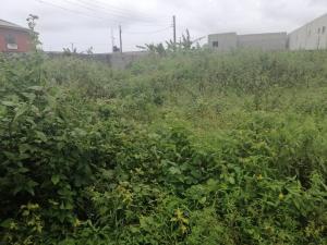 Land for sale Before Eleko Junction Eleko Ibeju-Lekki Lagos