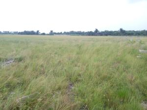 Mixed   Use Land Land for sale  Some minutes drive after the prestigious La Campaigne Tropicana Beach Resort and few minutes drive from the Lekki Free Trade Zone  LaCampaigne Tropicana Ibeju-Lekki Lagos