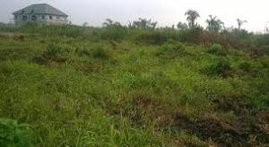 Land for sale Close to Ogor Technical Colleage Ughelli North Delta
