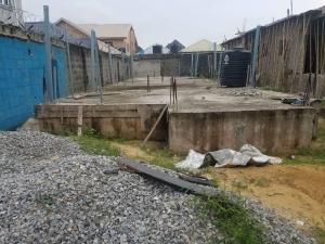 Residential Land Land for sale Opposite Fara Park Estate Majek Sangotedo Lagos