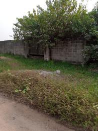 Residential Land Land for sale Peace estate Ago palace Okota Lagos