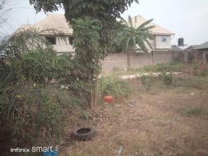 Mixed   Use Land Land for sale Unique Estate  Baruwa Ipaja Lagos