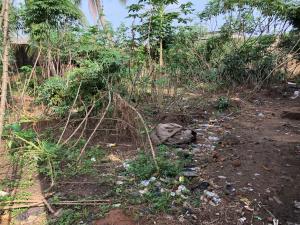 Mixed   Use Land Land for sale Ishaga Ifako-ogba Ogba Lagos - 0