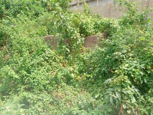 Land for sale Unique Estate  Baruwa Ipaja Lagos
