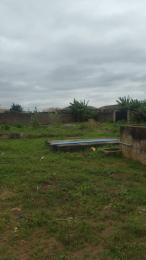 Residential Land Land for sale Amazing grace Estate, Abule Egba Abule Egba Lagos