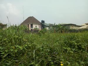 Land for sale Eyituoyo omatshola street, off baale shekoni Ajao Estate Isolo Lagos