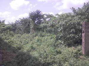 Residential Land Land for sale peace avenue, aboru Ipaja Lagos