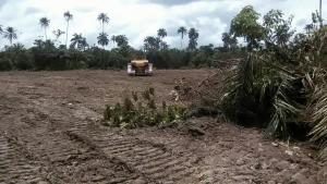 Residential Land Land for sale UDU WARRI DELTA STATE Warri Delta
