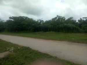 Industrial Land Land for sale Phase 3 Industrial Area of Agbara Estate, Ogun State.  Agbara Agbara-Igbesa Ogun