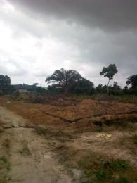 Mixed   Use Land Land for sale Rumucholu street Eneka Port Harcourt Rivers