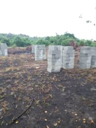 Residential Land Land for rent Arise&Shine Estate,behind Beechwood estate. LBS Ibeju-Lekki Lagos