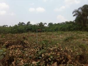 Residential Land Land for sale Treasury Palm estate, Ojugbo Ibeju-Lekki Lagos