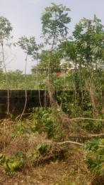 Industrial Land Land for sale Agbowa Ikorodu Ikorodu Lagos