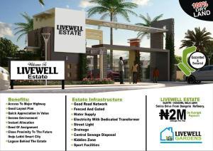 Land for sale Olooto/Ogogoro Free Trade Zone Ibeju-Lekki Lagos - 0