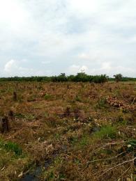Land for sale Oju-Agba Village Eleko Ibeju-Lekki Lagos