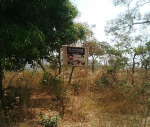 Land for sale Behind The Beautiful Mpape Hills, Via Katampe Village, Katampe Main Abuja