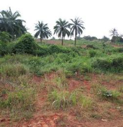 Land for sale Nkwelle, Anambra Oyi Anambra