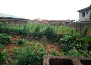 Residential Land Land for sale Elebu Express Oluyole Estate Ibadan Oyo - 0