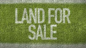 Joint   Venture Land Land for sale Old Ikoyi Ikoyi Lagos