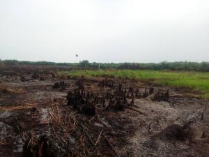 Residential Land Land for sale Ibeju Agbe Eleranigbe Ibeju-Lekki Lagos