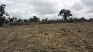 Residential Land Land for sale Idi ope Akala Express Ibadan Oyo