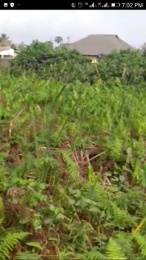 Land for sale Ado Odo/Ota Ogun