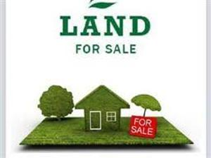 Land for sale along Lagos-Ibadan Express Way, near d Redemption Camp Mowe Obafemi Owode Ogun