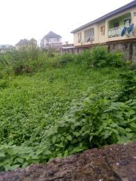 Residential Land Land for sale - Ago palace Okota Lagos