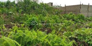 Land for sale Road 4, Diamond Estate, Abule Ado  Festac Amuwo Odofin Lagos