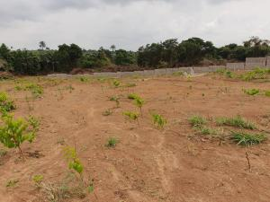 Mixed   Use Land Land for sale within the axis of Lagos-ibadan expressway, shagamu-ore highway Sagamu Sagamu Ogun