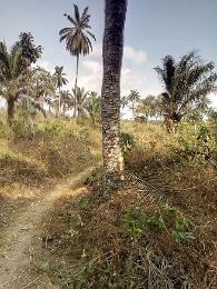 Mixed   Use Land Land for sale Amaenyi Awka North Anambra