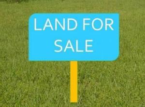 Land for sale Lafiaji off orchid hotel  Ikota Lekki Lagos - 1