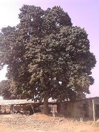 Land for sale Barracks Badagry Badagry Lagos