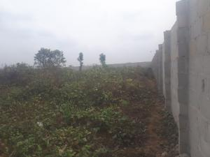 Mixed   Use Land Land for sale Eneka Atali road  Atali Port Harcourt Rivers