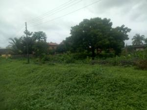Land for sale Age Mowo, Along Badagry Express Way Age Mowo Badagry Lagos