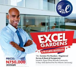 Land for sale Pan Atlantic university  Free Trade Zone Ibeju-Lekki Lagos